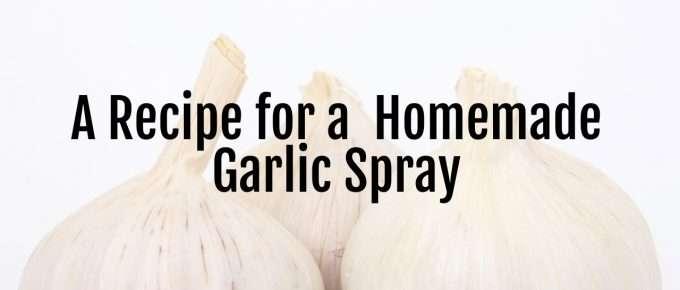 garlic spray