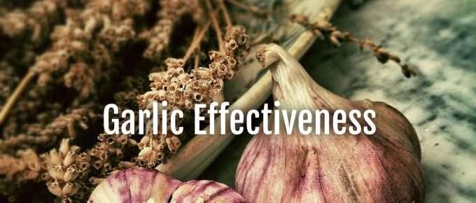 garlic effectiveness