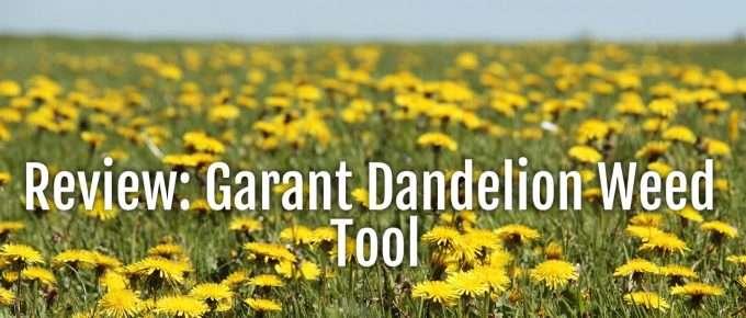 garant dandelion tool