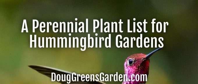 hummingbirdplantlist