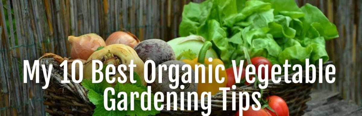 vegetable tips