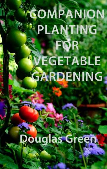 Companion Planting For Vegetable Gardening