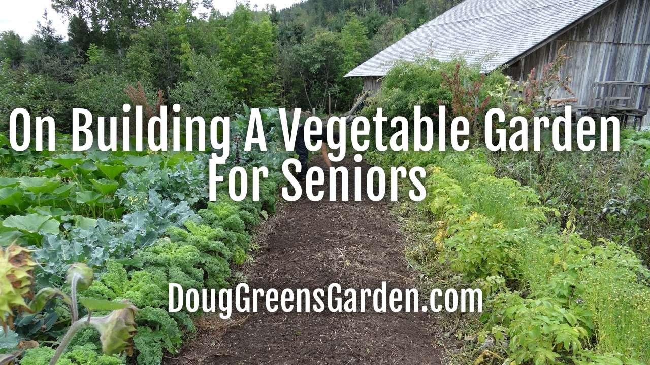 On Building A Vegetable Garden For Seniors