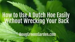 dutch hoe