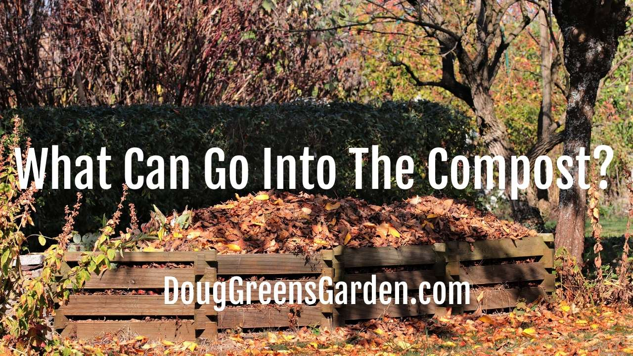 What Can Go Into The Compost?